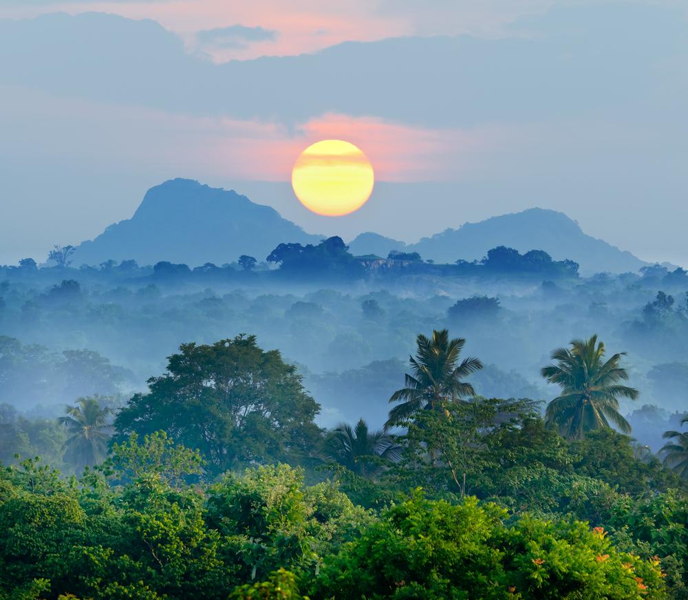 Sunset over Sri Lanka jungle
